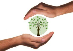 ISO 14001 Benefits