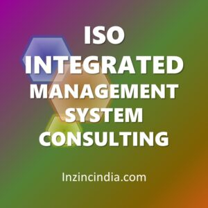 iso integrated management system consultants in india