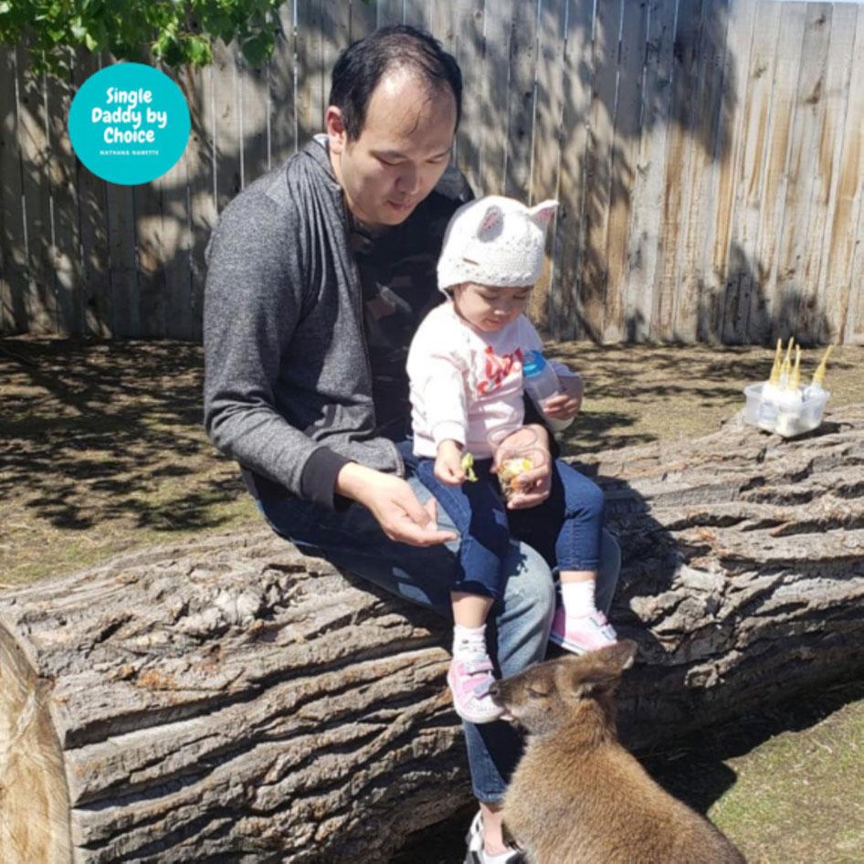 Nathan Chan and his daughter born through surrogacy playing with kangaroos