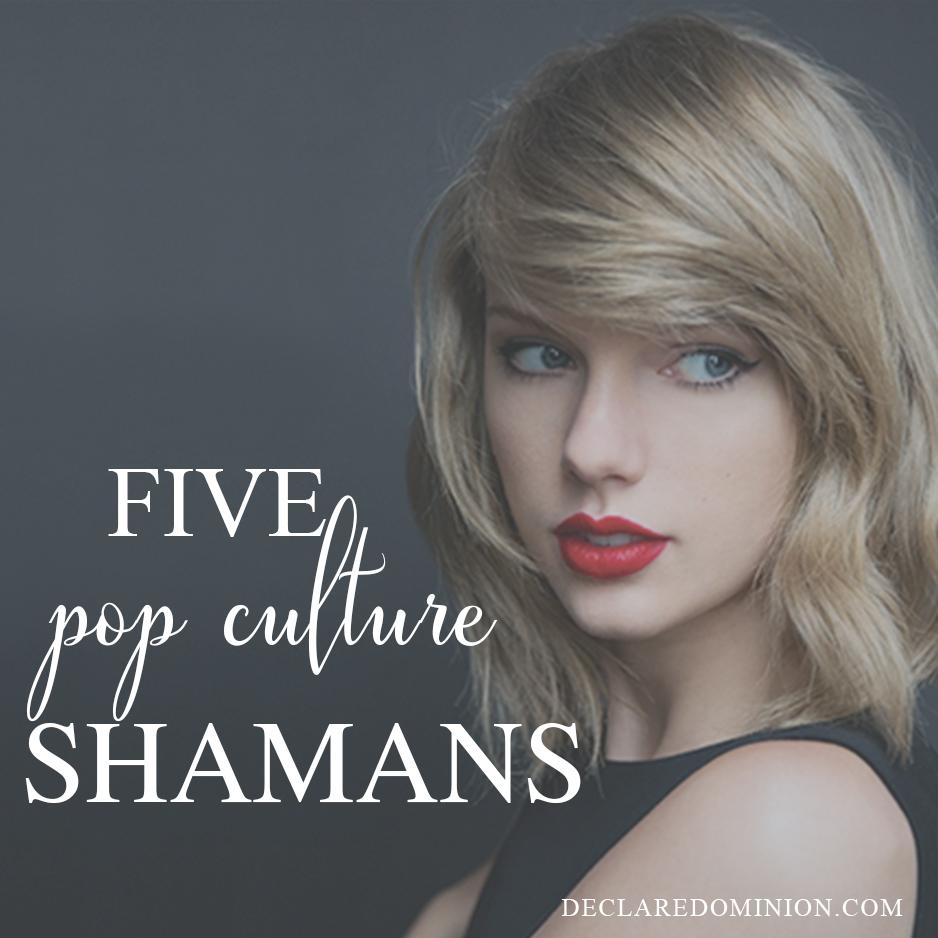Pop Culture Shamans, pop culture gurus