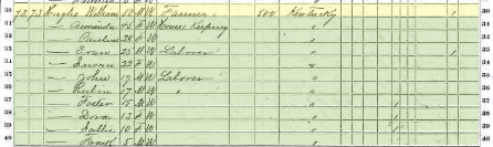 Cropped image of William Hughes family entry in 1870 US Census in Cole County, Missouri.