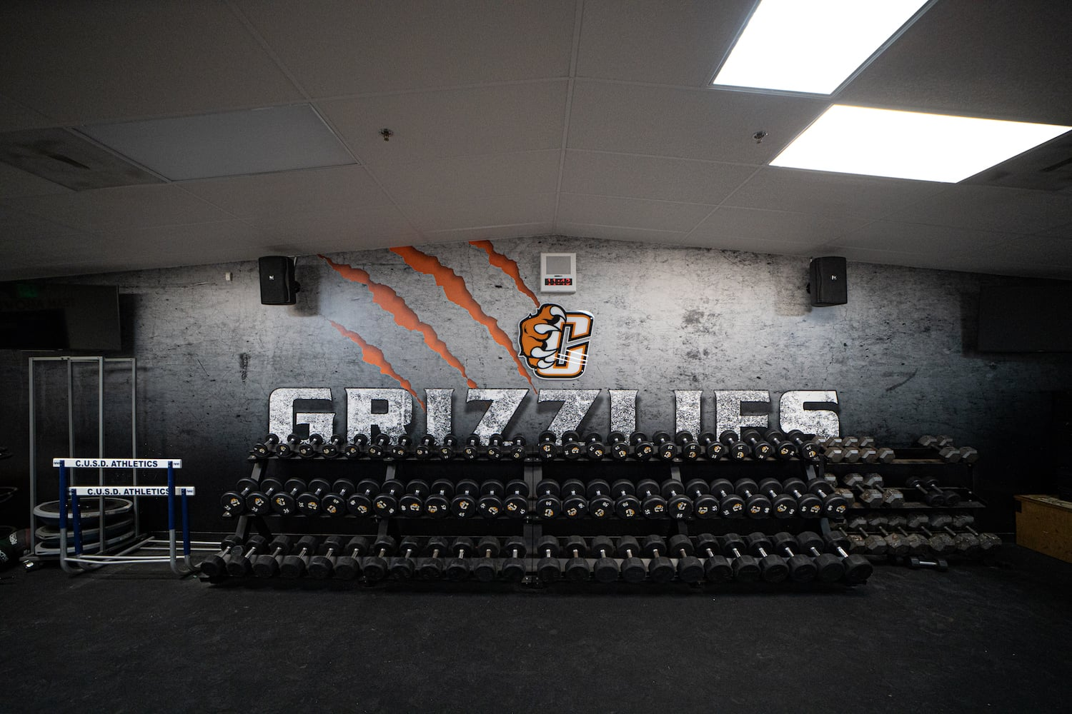 Wall Mural Central Weight Room 2 - Copy