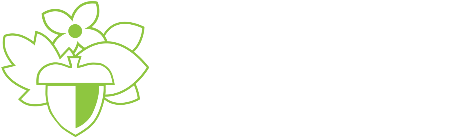Cincinnati Parks Foundation Logo