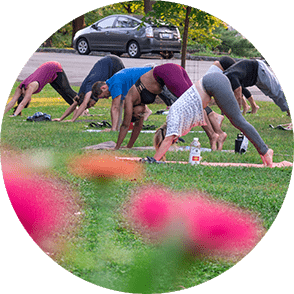 A group of people doing downward dog at a yoga class in Burnet Woods