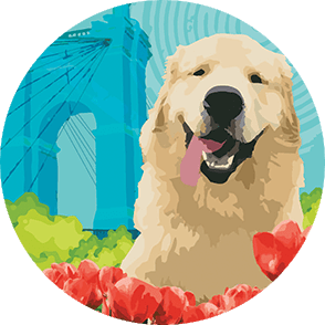 Cartoonish illustration of a happy golden retriever