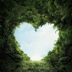 A heart shape cut out of bushes.