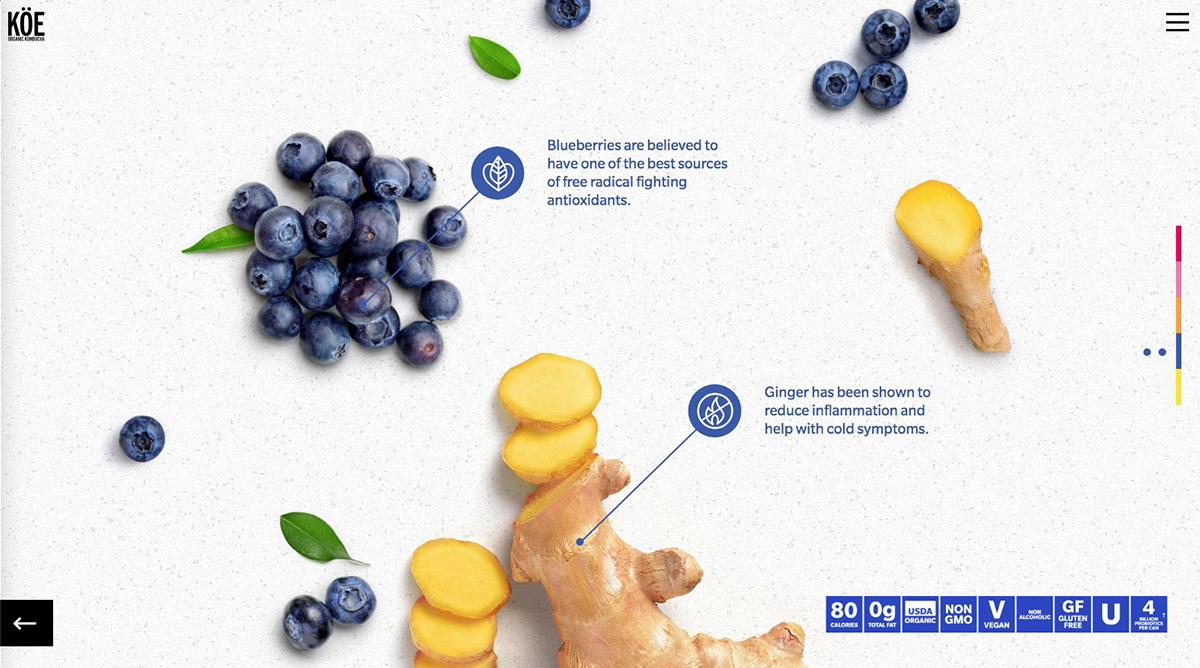 koe_blueberryginger