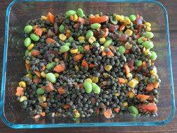 Lentil Rainbow Salad