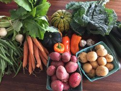 This weekend at our farmers market…