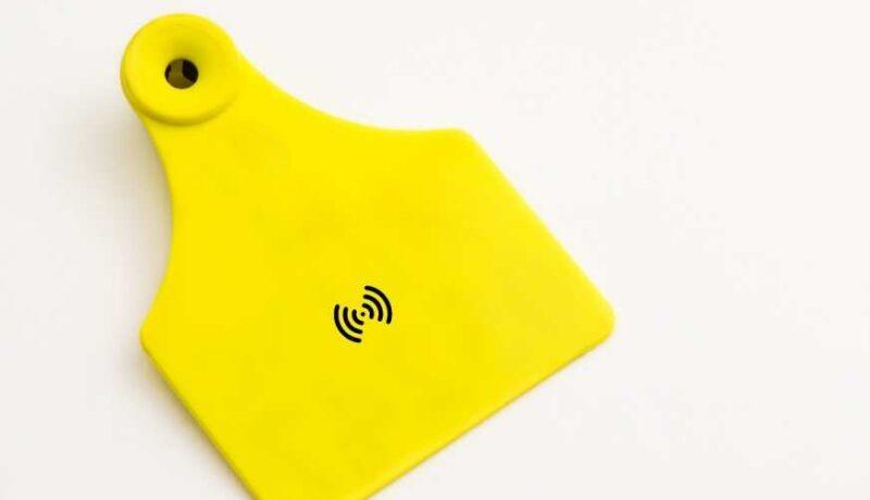 Tracking Livestock Animals through RFID Technology