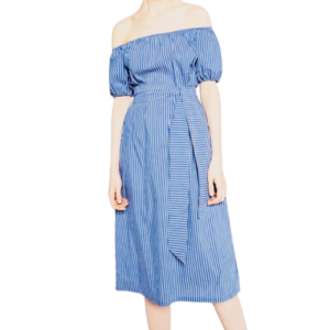 Zara Blue Striped Midi Dress