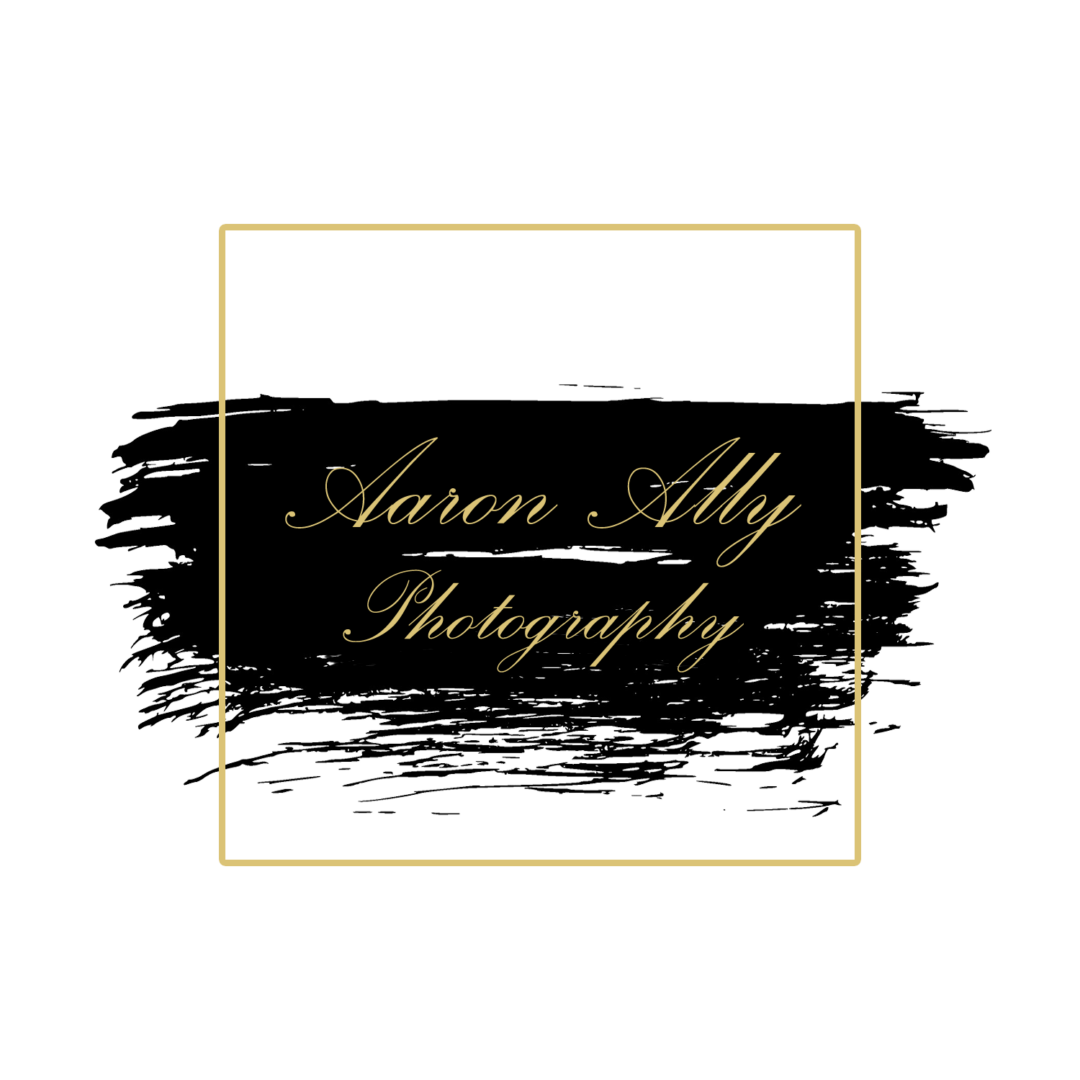 Aaron Ally Photography Logo - 2 (bcf2ef11-ddcd-4b5c-9c9c-38062429928c)