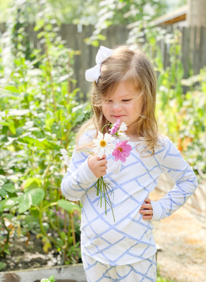 How to Grow an Easy Cutting Garden-Part 1