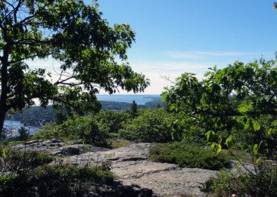 Maine Hiking