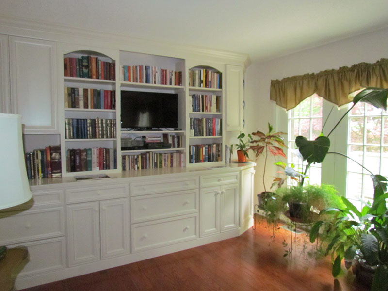Interior Bookcase Design and Build