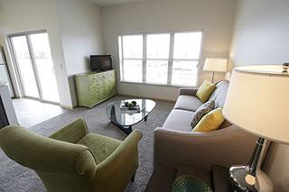 livingroom_windows