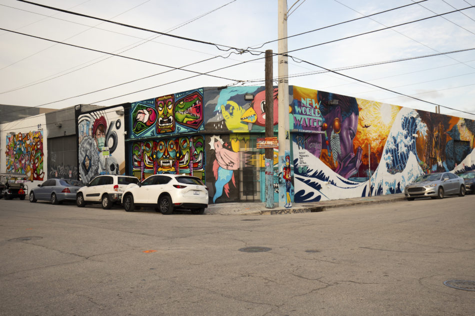 A Streetscape View of Wynwood