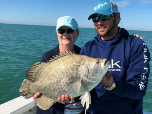 sanibel tripletail