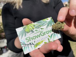 showgrow-vegas-flower