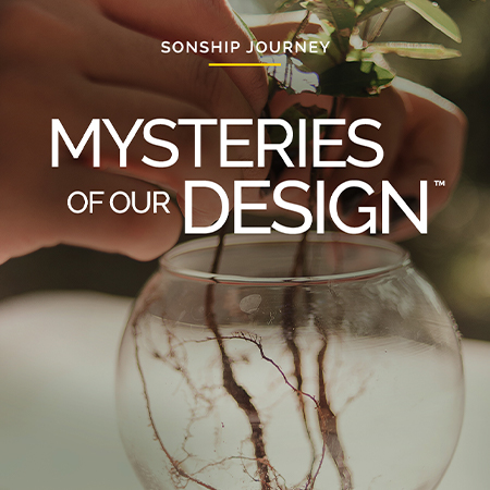 Sonship Journey: Mysteries of Our Design – Enroll