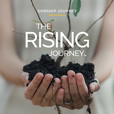 Freedom Series: The Rising Journey
