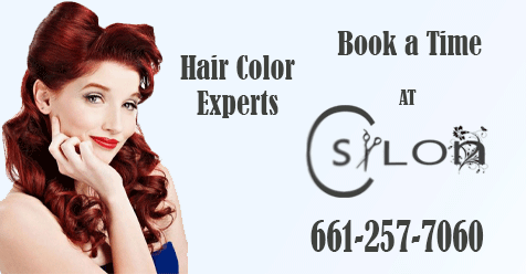 Call today for Future Appointment   C Salon SCV