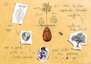 process - forget-coffins-organic-burial-pods