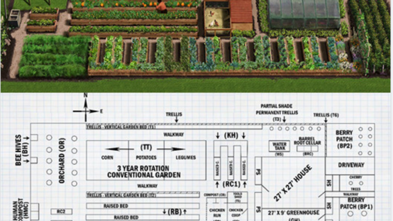How to become self-sufficient on 1/4 acre