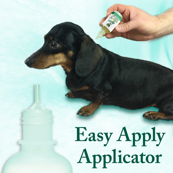 PupAgain CBD CBG drops for anxiety and pain relief photo of Easy Apply Applicator