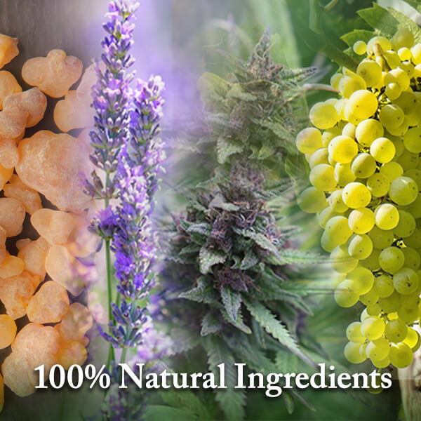 PupAgain has 100% Natural ingredients mixed with CBD and CBG. PupAgain provides anxiety relief and pain relief for dogs