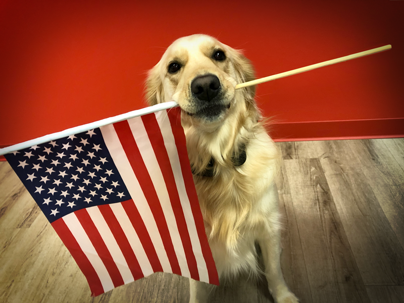 Bash holding the American flag