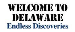 firma w delaware usa