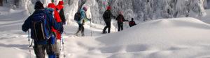 Girdwood Snowshoeing Tour