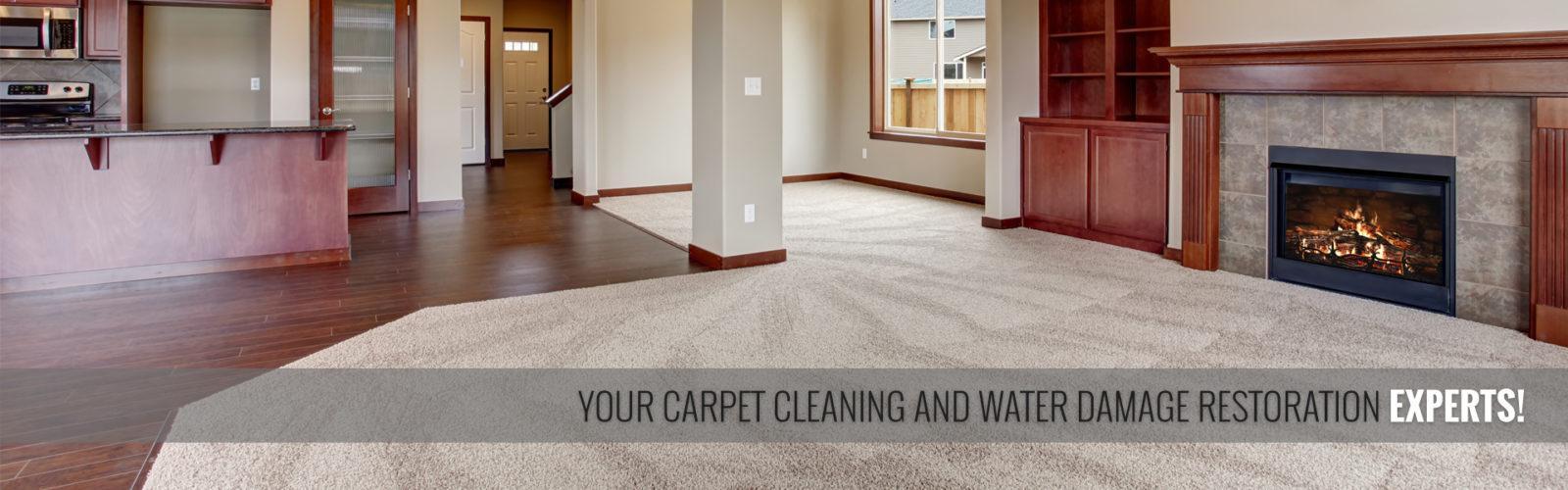 Tim's Carpet Cleaning