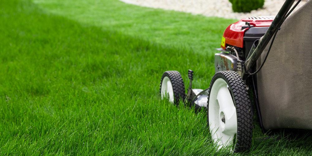 Lawn-Mower