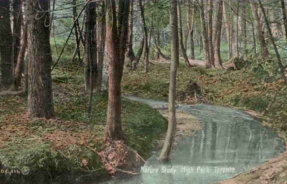 Postcard-creek-590_v1