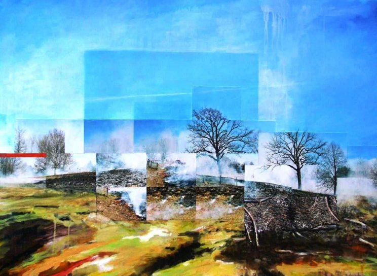 Burn at Hawk Hill. Frances Patella