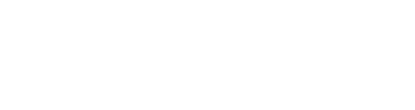 Grief Survivor