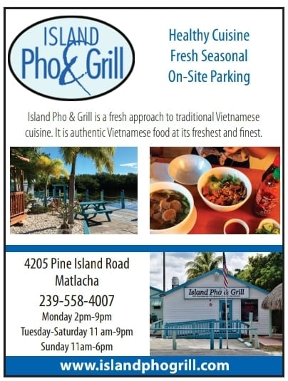 Island Pho and Grill Fall 2020