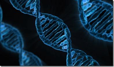 Gene BRCA Supreme Court Breast Cancer
