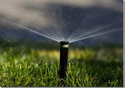 Steve Brown Water Conservation Plan