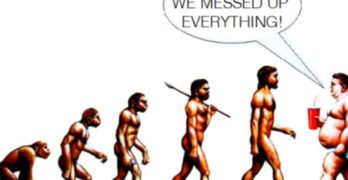 The pinnacle of evolution is life, not the human being