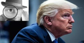 Donald Trump mole in the white house