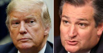 Republicans Ted Cruz Donald Trump