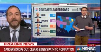 Chuck Todd Democratic Establishment Bernie Sanders