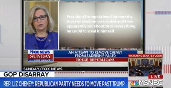 Liz Cheney ON FOX NEWS, tells their audience that Trump was trying to steal the election.