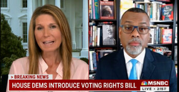 Dr. Glaude on why filibuster gives Dems cover for the real reason there's no meaningful voter bill.