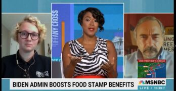 Tiffany Cross on SNAP Food Stamps