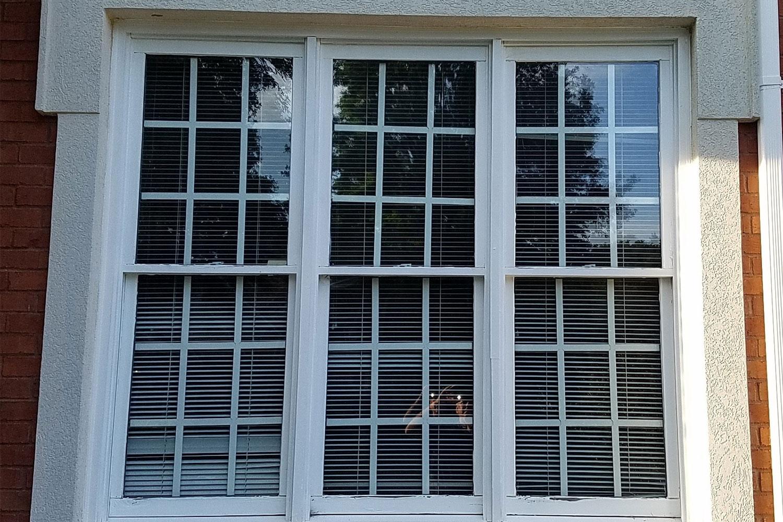 window before lenoir home