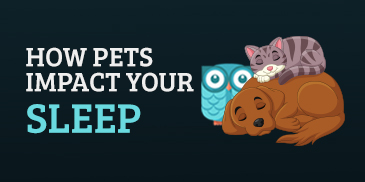 How Pets Impact Sleep